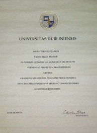 Trinity Degree Certificate - click for pdf version